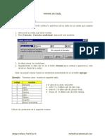 Fundesan Manual Excel Avanzado