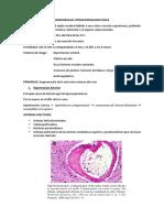 ECV  Hemorragico.docx