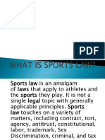 Intro to Sports Law