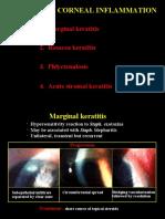 13 Peripheral Corneal Inflam