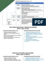 Procedimientos de Identificación de Proyectos e Inversiones