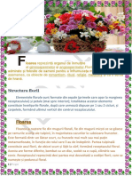 Flori-proiect-tic2 (1).pdf