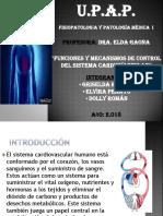 Funciones y Mecanismos de Control Del Sistema Cardiovascular