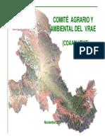 PONENCIA_VRAE.pdf