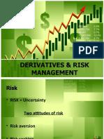 Derivatives & Risk Management