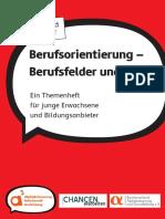 Inhalte_Berufsorientierung_Berufsfelder