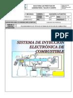Guia Sistemas de Inyeccion (1)
