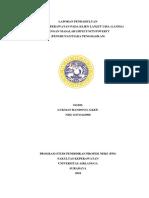 LAPORANPENDAHULUAN-ASKEPLANSIAIMPECUNITY-1.pdf
