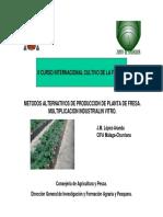 Metodos Alternativos de Produccion de Planta de Fresa.