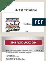 Produccion de Gallinas