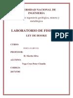 LABO 1 FSICA 2 (1)