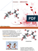 Conexiones Bioquímicas de Los Aminoácidos