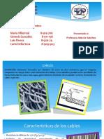 Cables Estructurales 3