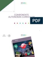 Autonomia curricular 31mayo2017_V3 Luis René