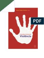 Conceitos Formas da violência