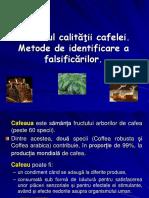 123945357 Controlul Calitatii Cafelei Metode de Identificare a Falsificarilor