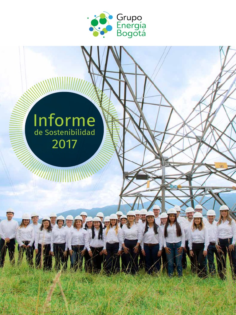 e5df44e317133 Informe de Sostenibilidad 2017.pdf