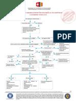 1.-DurereToracica-1.pdf