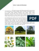 Flora y Fauna de Retalhuleu