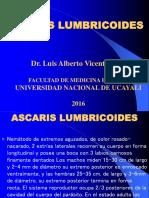 Ascari Dias Is