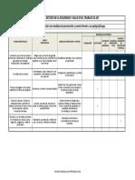 Formato Matriz de Jerarquización Con Medidas de Prevención y Control Frente a Un Peligro