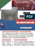 Semana 12 FALSOCIELORRASO (1).pdf
