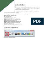 Calculating Vegetation Indices.docx