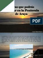 Carlos Michel Fumero - Playas Que Podrás Disfrutar en La Península de Araya