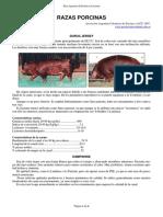 45-razas_porcinas