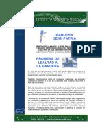 PromesaalaBandera2008.pdf