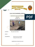 RASPA-informe-n-2.docx