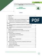 ESTUDIO DE VULNERABILIDAD.docx