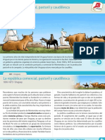 La Republica Comercial Pastoril y Caudillesca