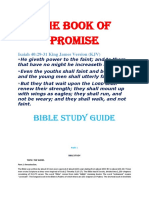 THE BOOK OF PROMISE