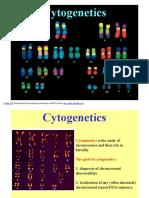 Cy to Genetics