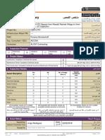 AAR-OMF-017 Inspection Summary - Snag List_FCC_Bypass Rawdat Rashed_STR Comments_25Feb2018