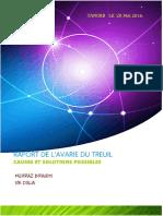 rapport avarie du treuil mai 2016.pdf