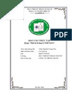 Bao Cao Thuc Tap - Vu Van Luc