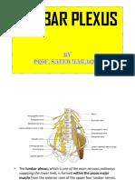 5.Lumbar Plexus&Innervation of Abdominal Viscera