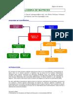 Algebra_Matrices.pdf