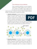 Metodos de Sistemas Coloidales en Los Alimentos