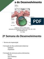 Segunda Semana - Prof. Juliana Coelho