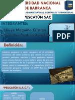TRABAJO-DE-PESQUERA-PESCATUN-2018.pptx