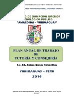 Plan Anual Tutoria 2014
