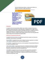 CONCEPTO de reservorio.docx