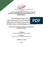 Uso de Productos Terapeuticos Naturales Cola de Caballo Equisetum Arvense Campos Fernandez Erika Janisse