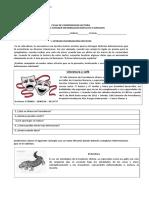 Ficha de Estrategias de Preguntas Explicita e Inplicita