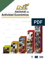 Encuesta Nacional de Actividad Económica (ENAE 2009)