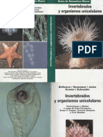 Animales - Invertebrados y Organismos Unicelulares.pdf