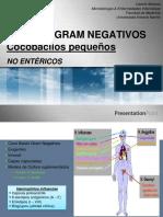 Clase 12. Cocobacilos Gram Negativos.pdf